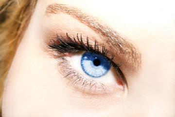 Poster de jardin Iris Beautiful insightful look blue eyes