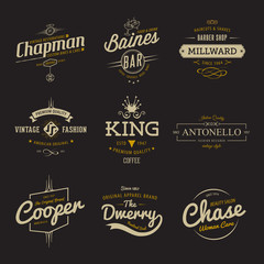 Vector vintage labels. Templates Set for banner, insignias, business brand logo design.