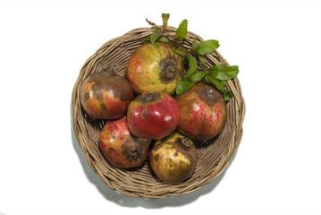 pomegranate on wicker tray isolated