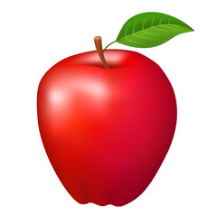 Red apple fruit isolated illustration vector