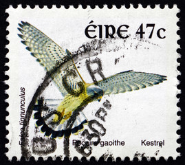 Postage stamp Ireland 2002 Kestrel, Bird of Prey