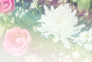 Abstract sweet fantasy flower with colourful filters in soft focus and blur style for background