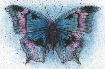 Blue Purple Butterfly