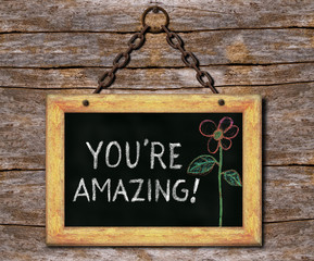 You Are Amazing on a Framed Wall Hanging
