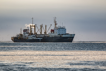 Russian fishing boat passes the fish on the fish processing base of the ice to the sea