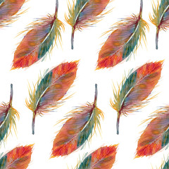 Watercolor feathers seamless pattern