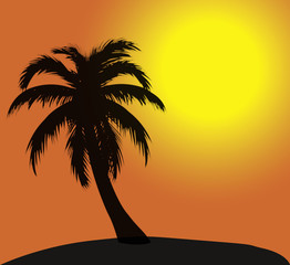 Fond palmier vacances