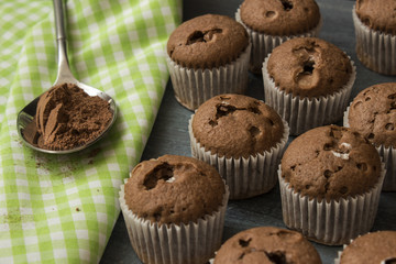 little chocolate cupcakes and spoon of cocoa powdew