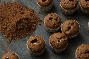 little chocolate cupcakes with cocoa powder
