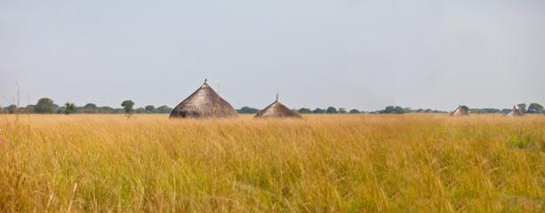 panorama of grassland of south sudan