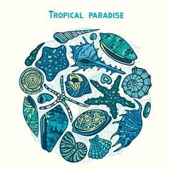 Set of seashells and starfish. Tropical paradise.