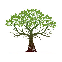 Tree with Green Leafs. Vector Illustration.