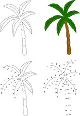 Cartoon palm tree. Vector illustration. Coloring and dot to dot