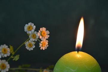 Gänseblümchen im Kerzenschein dekorativ