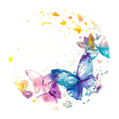Beautiful watercolor butterfly on white paper background.