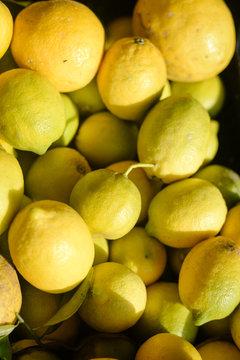Colorful lemons on market stall background