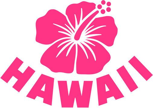 Hawaii with hibsicus flower