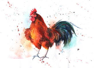 Watercolor hand-drawn bright-colored rooster