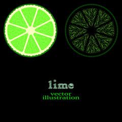 Lime Fruit, vector illustration