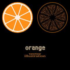orange fruit, vector illustration