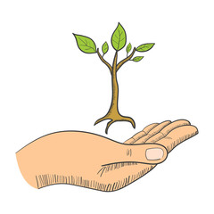 Hand with a young tree symbol