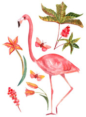 Set of vintage style watercolor drawings: flamingo, butterflies and plants