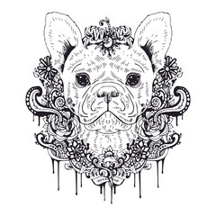 French bulldog graphic dog, abstract vector illustration