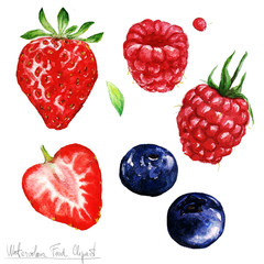 Watercolor Food Clipart - Berries