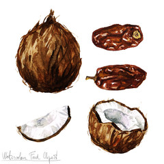 Watercolor Food Clipart - Coconut and Date