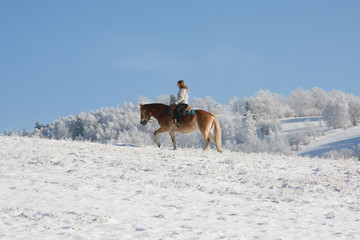 Young girl on horse riding through snowy landscape
