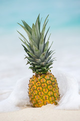 Pineapple fruit in caribbean sea water splashes