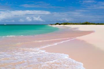 Fototapete - Pink sand beach