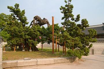Big bonsai