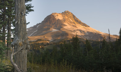 Mountain Landscape Mt Hood Oregon