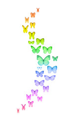 Curved group of studio photographed rainbow colored butterflies with an emphasis on the wings movement, that are gradually spreading at the center