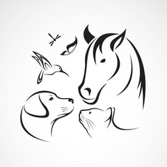 Vector group of pets - Horse, dog, cat, bird, butterfly, dragonf