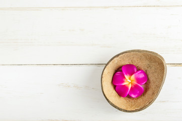 Plumeria aromatherapy candle in brown coconut shell