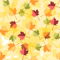 Seamless Autumnal background with leaves of maple