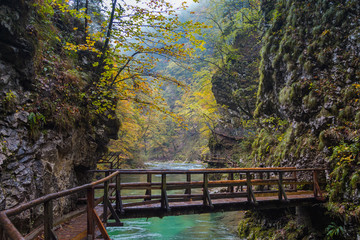 Wooden trail across Radovna river, which flows in Vintgar Gorge, Bled, Slovenia.