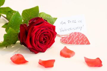 Valentinstag - Liebe