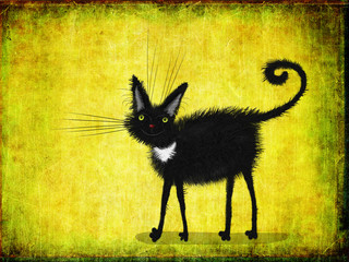 Black Kitten With Yellow Eyes On Lime Background