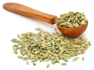 Fennel seeds in a wooden spoon