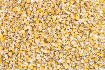 roman chamomile dried flowers full frame background