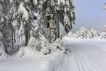 Deer stand - tree stand - lookout tower in mountains. Trees covered with fresh snow. Groomed ski trails for cross-country. Winter mountain landscape.