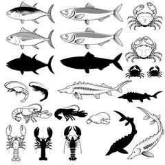 Set of the fish, crabs, shrimps, lobsters. Vector design element