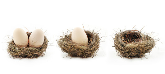 Empty nest and eggs inside the nests, isolated on white