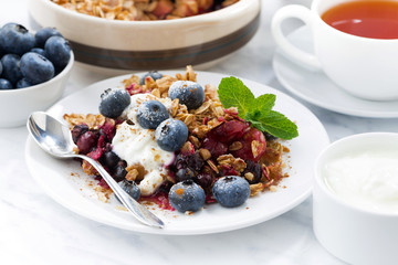 berry crumble with oat flakes, cream and blueberries