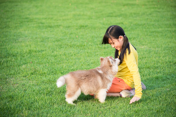 asian girl playing with siberian husky puppy in the park