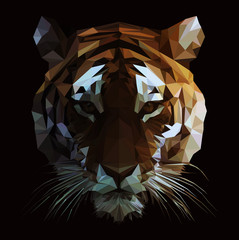 Low Poly Vector Tiger Illustration