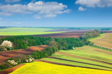 Сountryside Colorful Fields and Sky Background - nature landsca